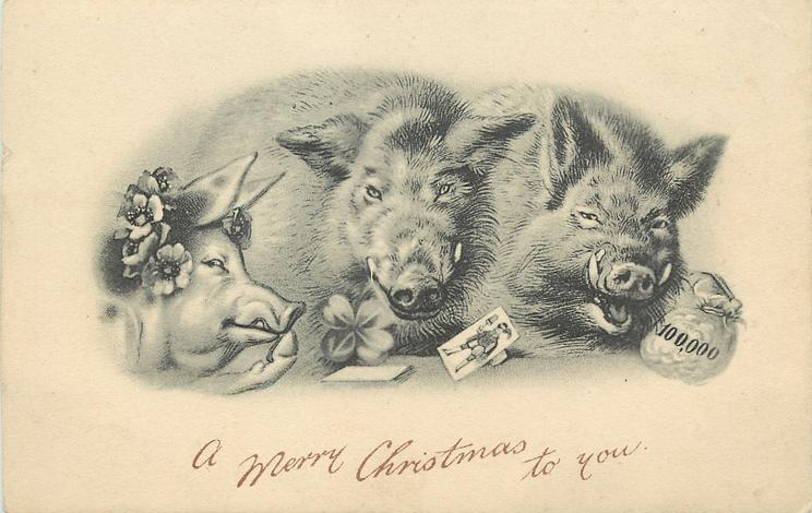 A MERRY CHRISTMAS TO YOU  three pigs, money bag, one playing card