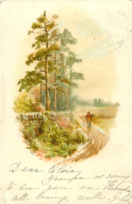 man walking distantly in lane, wall with trees behind left