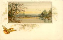 A WINTER EVENING  robin