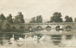 CLAPTON BRIDGE