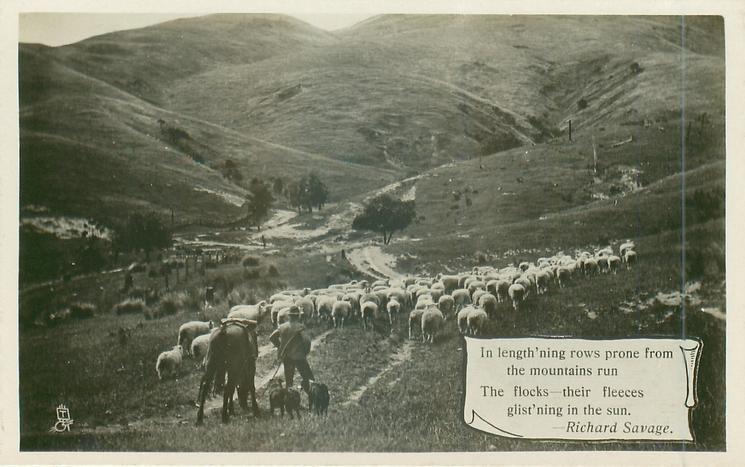 IN LENGTH'NING ROWS PRONE FROM THE MOUNTAINS RUN THE FLOCKS//GLIST'NING IN THE SUN.