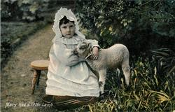 MARY HAD A  LITTLE LAMB young girl in white holds lamb