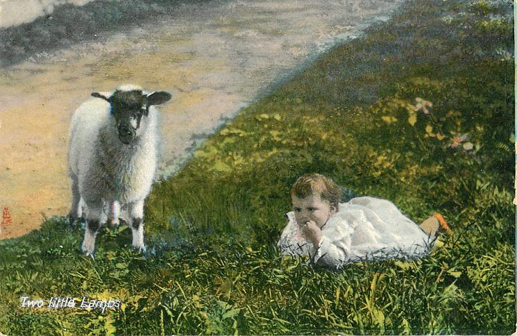 TWO LITTLE LAMBS  baby girl and lamb