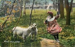 WHEN ALL IS YOUNG girl on swing looks at two  lambs