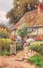 garden in front of thatched cottage, path, gate & stone wall, pigeons on roof, large tree behind