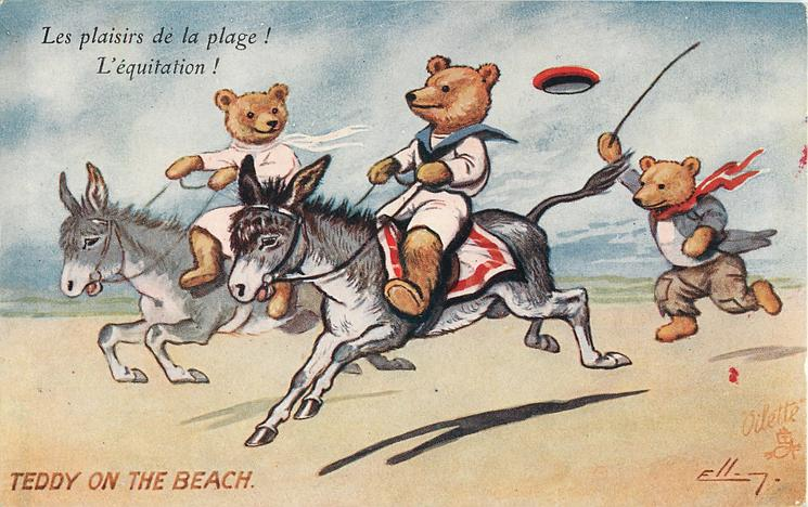 TEDDY ON THE BEACH