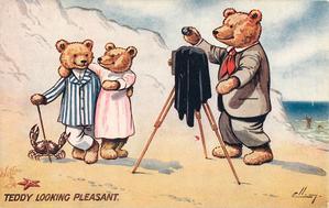 TEDDY LOOKING PLEASANT