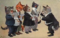 tom cat conducting male voice quartet