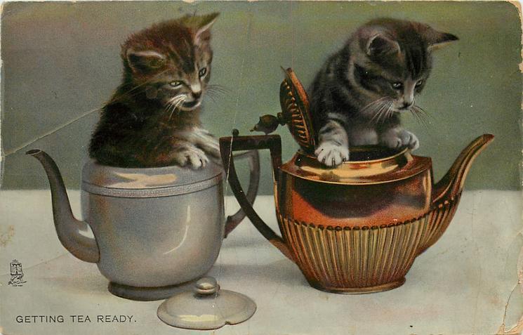 GETTING TEA READY