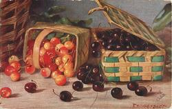 black and red/yellow cherries in two baskets, one on its side spilling cherries