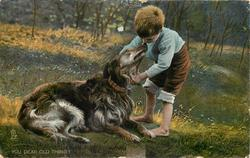 YOU DEAR OLD THING!  boy bends over and pets old irish wolf/deer hound