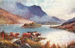 LOUGH FEE, CONNEMARA