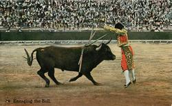 ENRAGING THE BULL