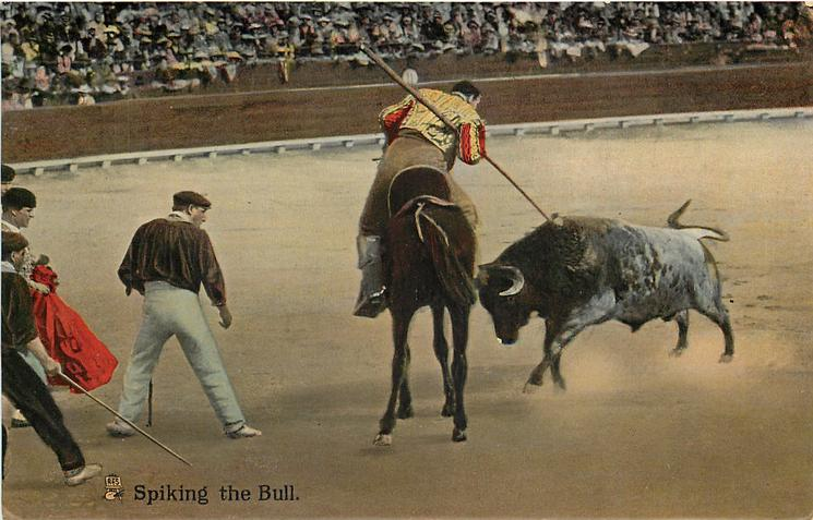 SPIKING THE BULL