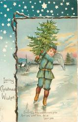 LOVING CHRISTMAS WISHES  angel skates front carrying Xmas tree over shoulder