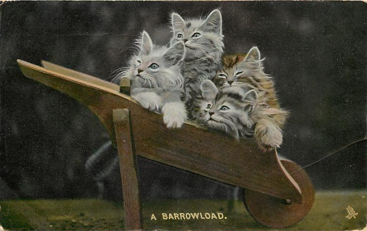 A BARROWLOAD.