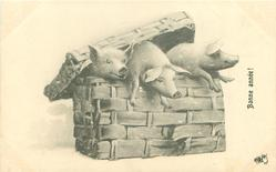 three piglets struggle to get out of a basket
