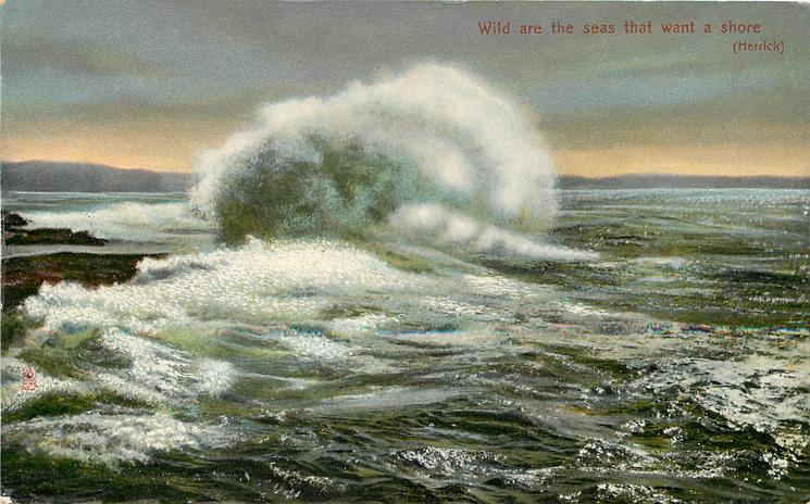 WILD ARE THE SEAS THAT WANT A SHORE