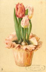 tulips in pot trimmed with pink/orange paper