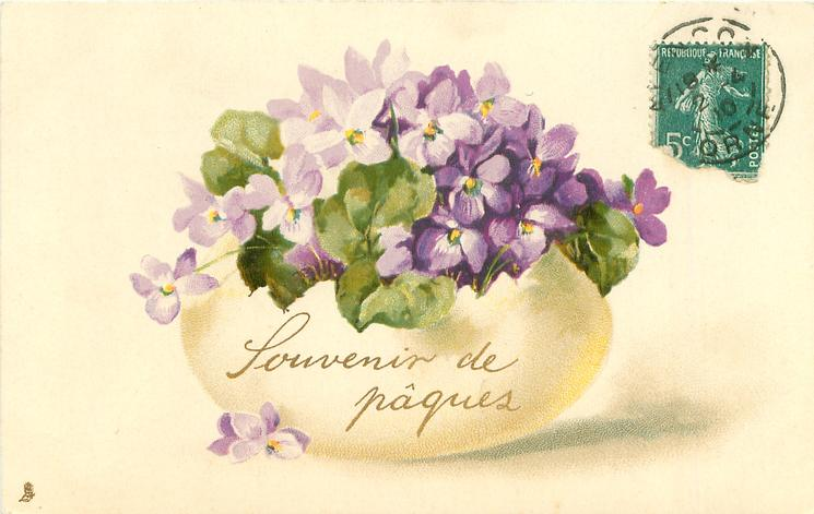 violets in horizontal egg shell open at top
