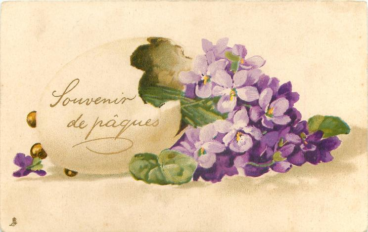 violets in egg shell open at right side