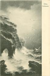 cliffs left, sea right, many gulls, distant sailing ship in very rough sea