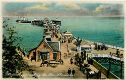 STEAMER APPROACHING THE PIER.
