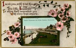 inset CENTRAL PROMENADE AND WINTER GARDENS   wild pink roses frame picture of promenade