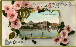 THE SANDS AND KURSAAL  wild pink roses