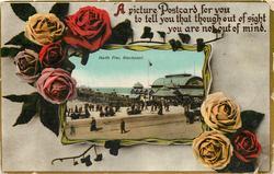 NORTH PIER.    roses