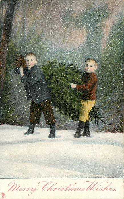 MERRY CHRISTMAS WISHES  two boys walk left carrying Xmas tree between them, they face front, snow scene