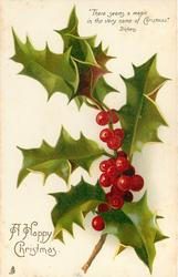 A HAPPY CHRISTMAS.  spray of holly
