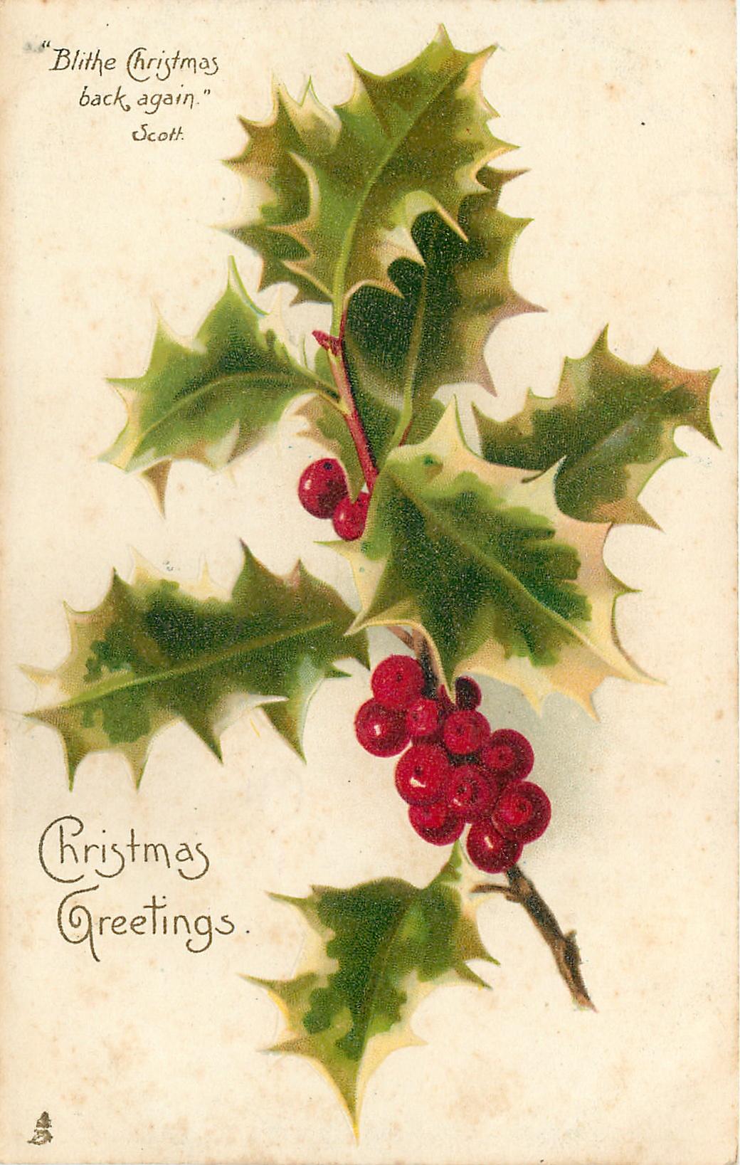 Christmas Greetings Spray Of Holly Tuckdb Postcards