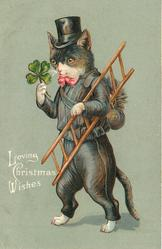LOVING CHRISTMAS WISHES  chimney sweep cat in black, carries ladder & 4 leaf clover