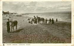 NAIRN BEACH, LOOKING WEST  donkeys