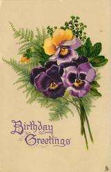 two purple pansies, and one yellow at top, purple below
