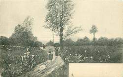 two women, one carrying faggots, walk forward on field path, child accompanies