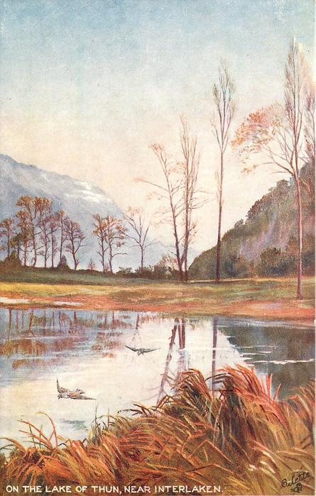 ON THE LAKE OF THUN, NEAR INTERLAKEN