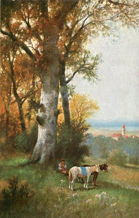 man sits beneath beech tree, two horses in front