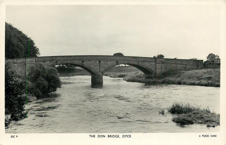 THE DON BRIDGE