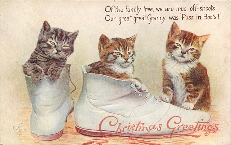 "OF THE FAMILY TREE, WE ARE TRUE OFF-SHOOTS OUR GREAT GREAT GRANNY WAS ""PUSS IN BOOTS!"""