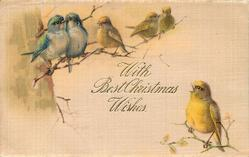 WITH BEST CHRISTMAS WISHES  two blue-tits & four yellow canaries