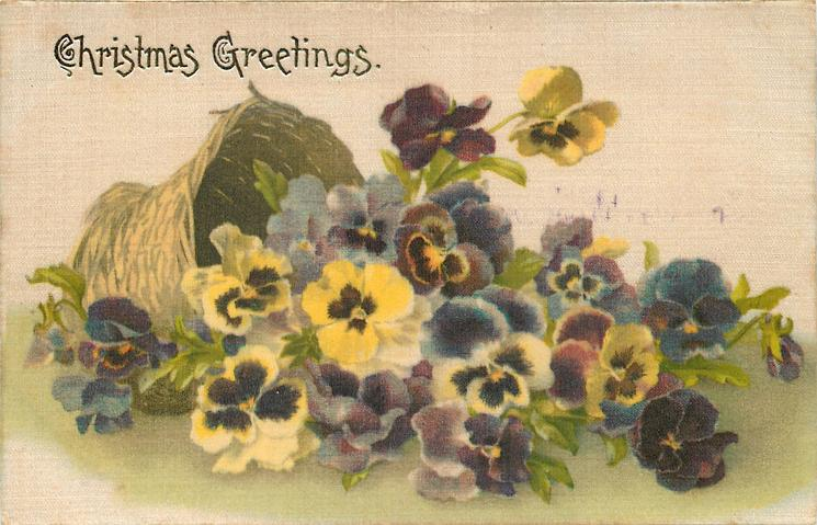 CHRISTMAS GREETINGS  multicoloured pansies falling out of tipped over basket