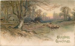 CHRISTMAS GREETINGS  winter scene, sheep driven front along road