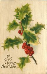 A VERY HAPPY NEW YEAR  sprig of holly thirteen berries
