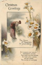 CHRISTMAS GREETINGS  (woman picking daisy inset, daisies)