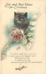 LOVE AND BEST WISHES FOR CHRISTMAS  verse, black kitten head above pink rose