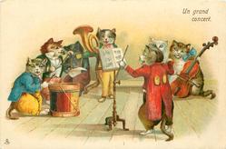 UN GRAND CONCERT  cat band