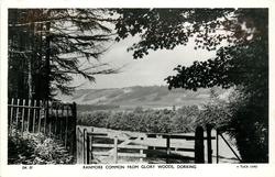 RANMORE COMMON FROM GLORY WOODS