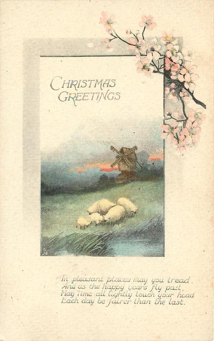 CHRISTMAS GREETINGS inset rectangle six sheep graze, windmill in distance